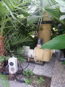 Behind every self-sustaining garden is a powerful pump and self-watering system