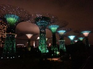 Changing lights at Supertree- Gardens by the Bay