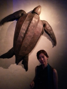 Leathery turtle